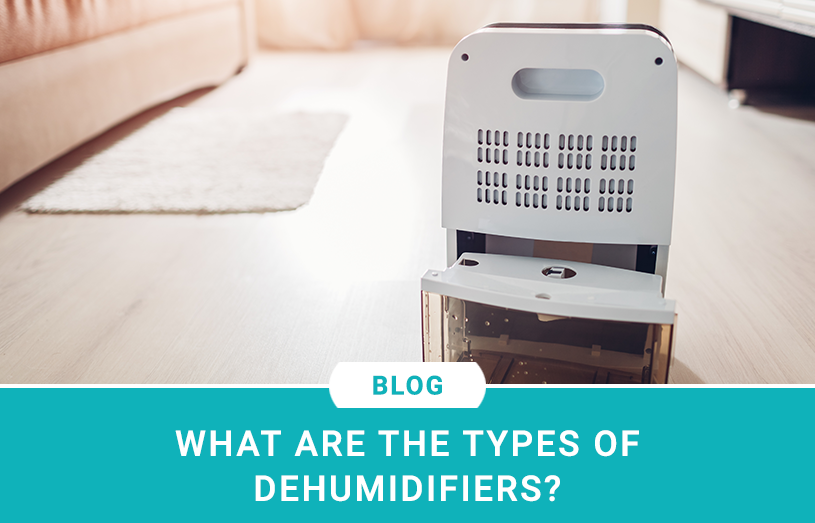 What are the Types of Dehumidifiers