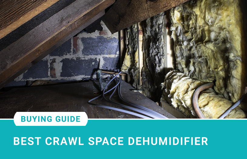 Best Crawl Space Dehumidifier