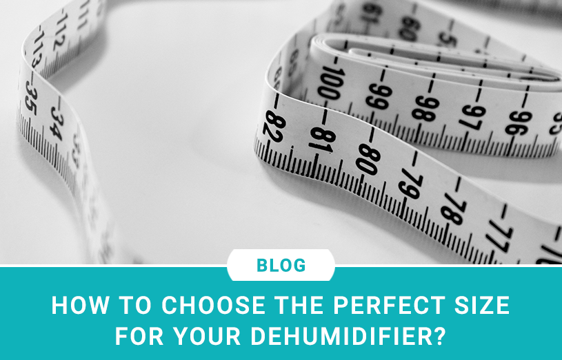 How to Choose the Perfect Size for your Dehumidifier